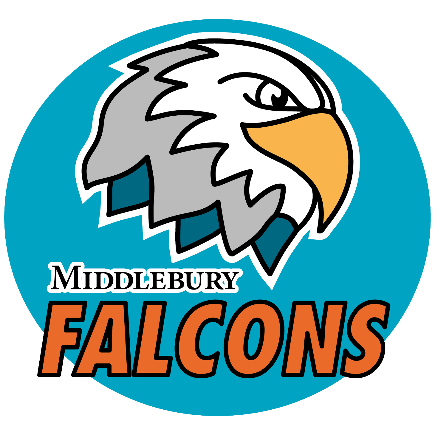 Middlebury Board Meeting Notice: June 10