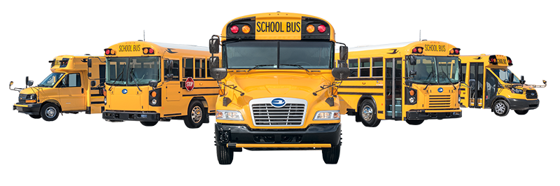 Stock image of school buses